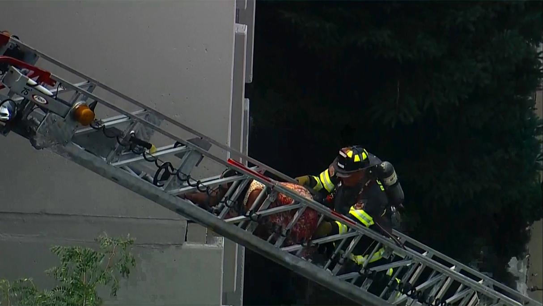 Richton Park Fire Rescue