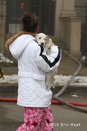 Chicago firemen rescue dog from fire