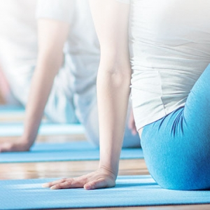 Holistic fitness services