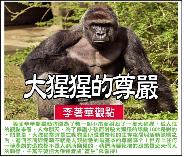 大猩猩的尊嚴-1