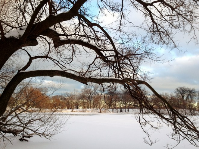 Winter, North Pond, Chicago
