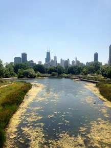 Lincoln Park Lagoon, Chicago