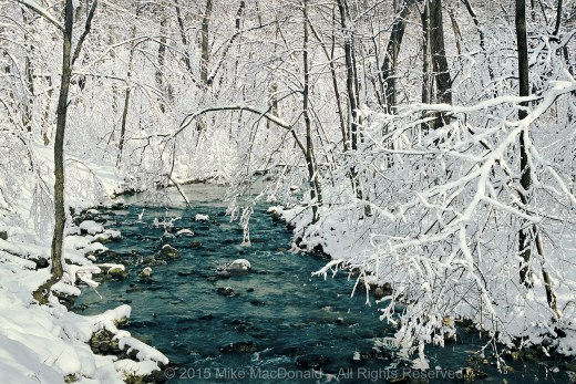Here at Black Partridge Woods in Lemont, Illinois, a heavy March snowfall turned a gray winter scene into a river through fairyland.