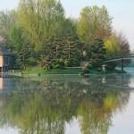 Visit Chicago Botanic Garden on the cheap
