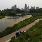 Volunteer with Pitch in for the Parks