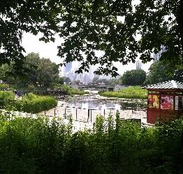Nature Boardwalk Lincoln Park Zoo
