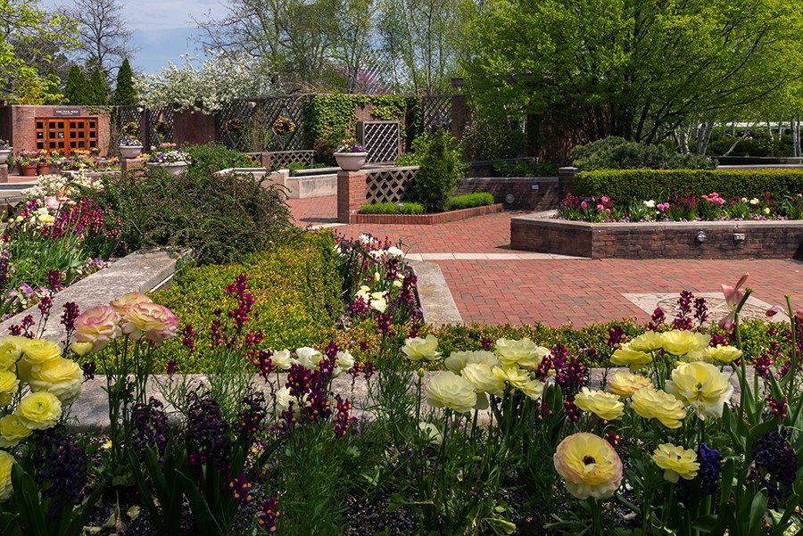 The Buehler Enabling Garden