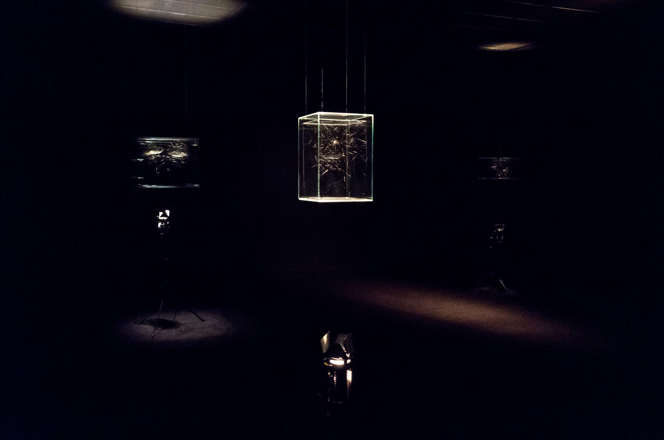 Tomás Saraceno's spiderwebs