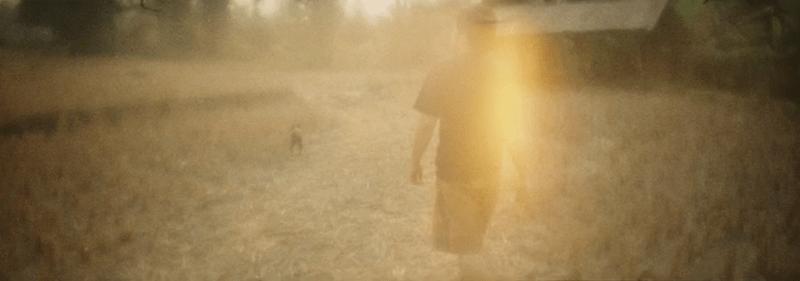 <i>Ashes</i> (2012)