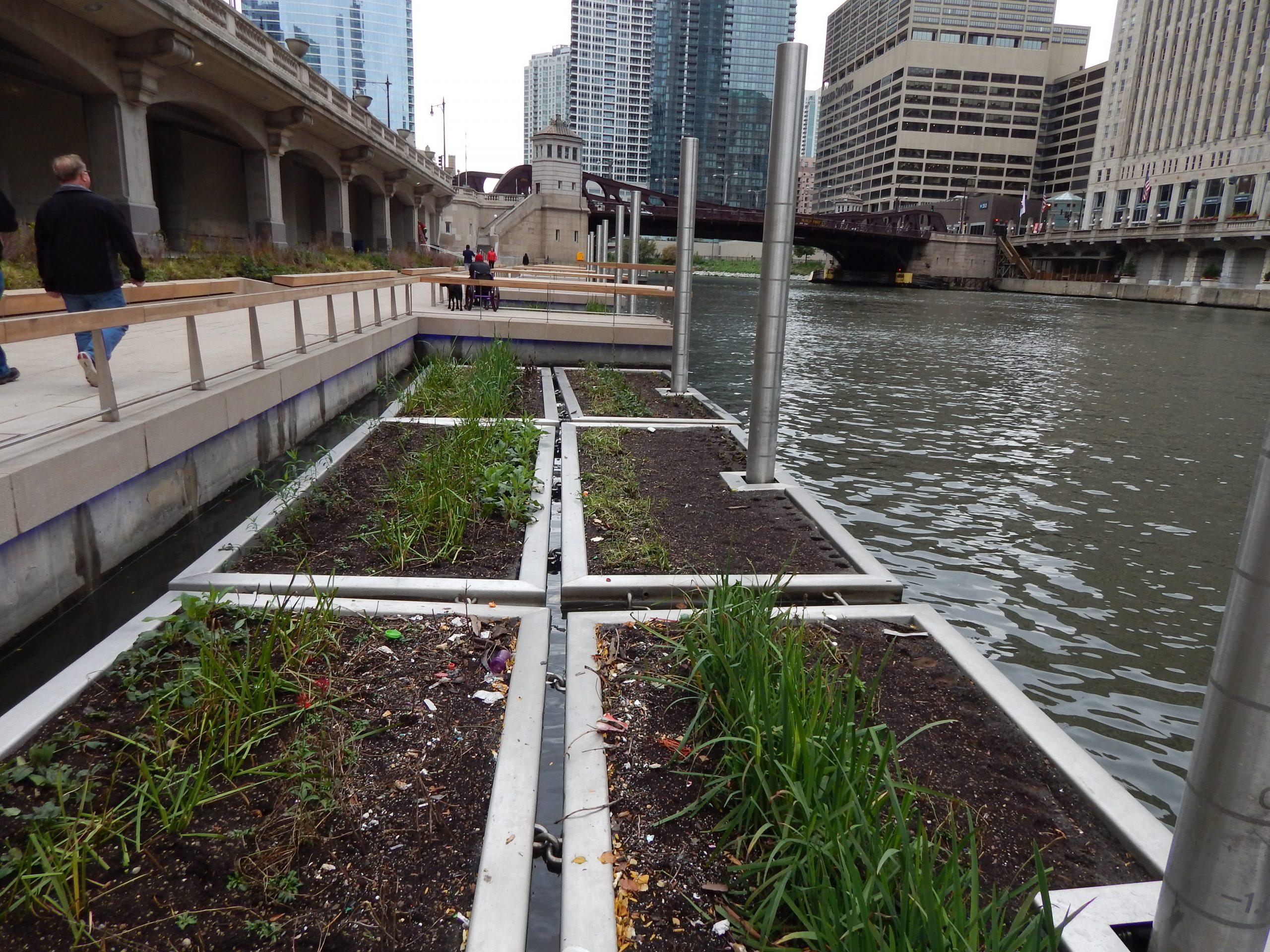Chicago Riverwalk, the Jetty