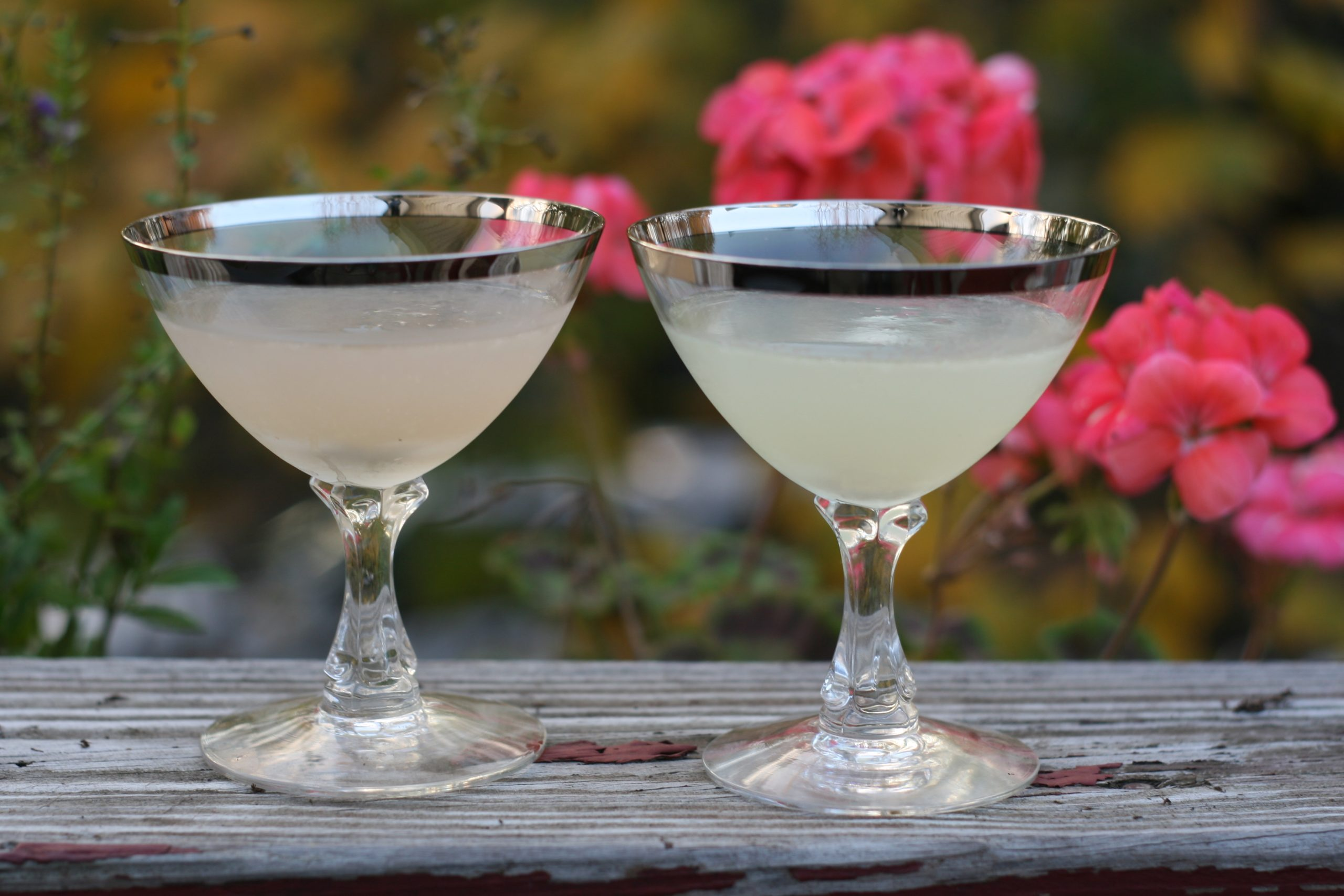 Corpse Reviver 2 made with Lillet (left) and Cocchi Americano (right)