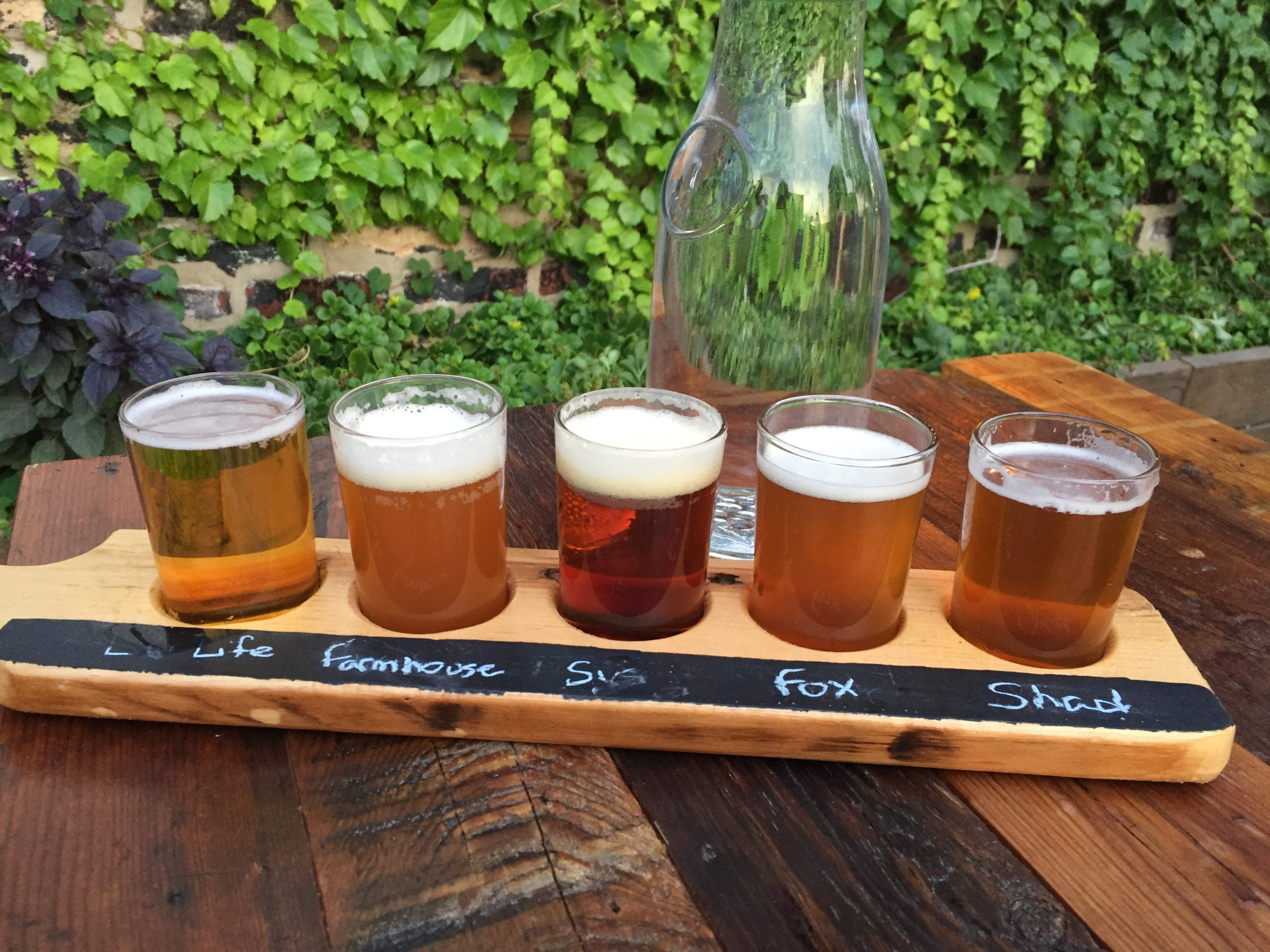 Beer flight at Alulu Brewpub and Brewery