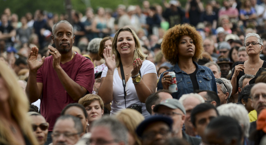 Fans at the 2015 Blues Festival