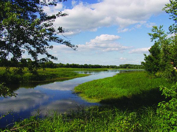 Nahant Marsh, Davenport's urban wetland