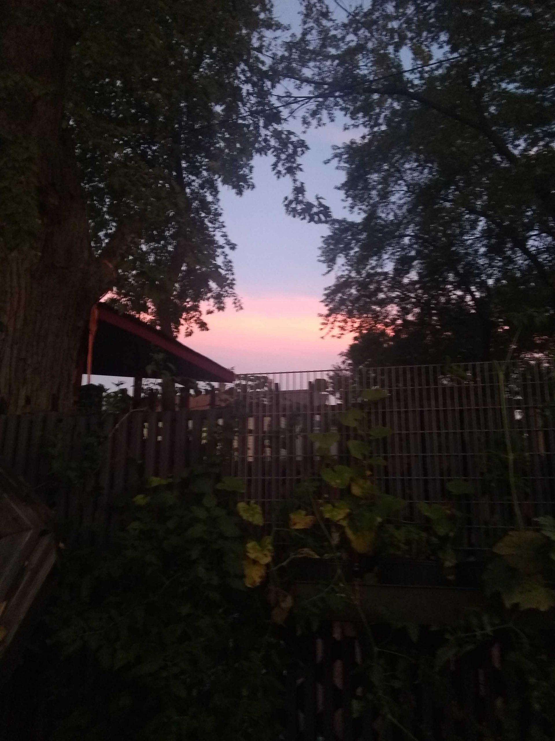 Sunset from a south-side backyard