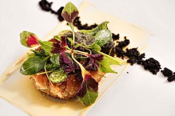 Salt cod cake with aioli, forest greens, and dehydrated black olive powder