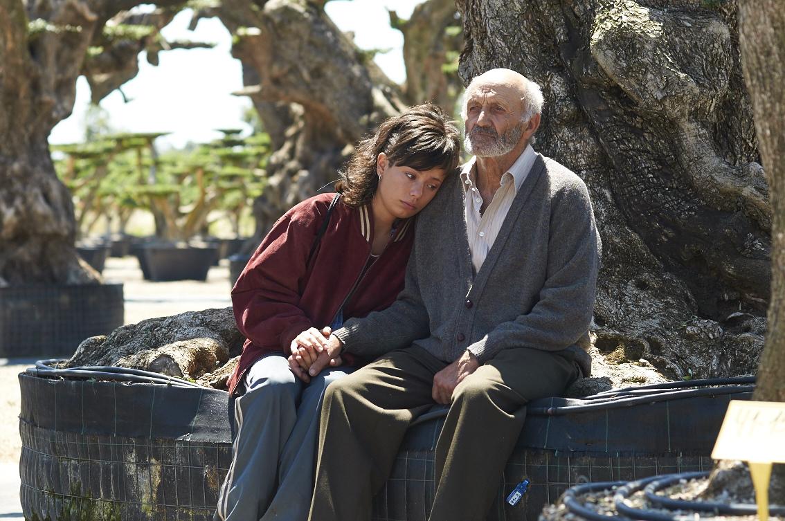 <i>The Olive Tree</i>