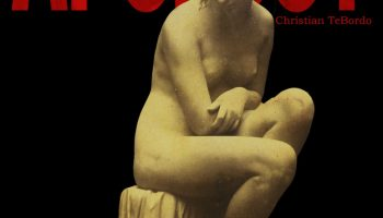 """the cover of """"The Apology,"""" a novel by Christian TeBordo, photo of female statue figure that is sitting on a stump (French artist Claude-Marie Ferrier's """"A Bather"""")"""