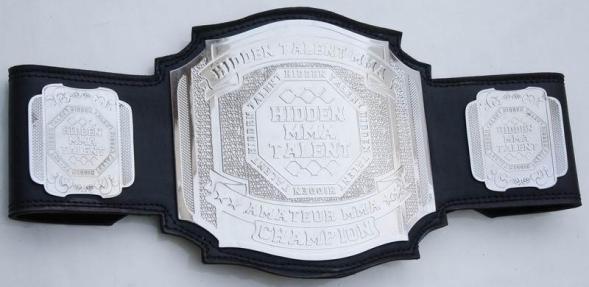 hidden mma belt
