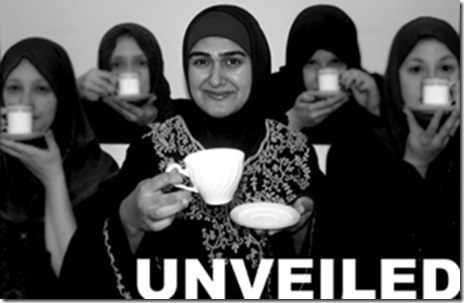 """Rohina Malik, in the poster for her powerful one-woman show """"Unveiled"""" - currently part of the """"What's Next Series"""" at Next Theatre of Evanston"""