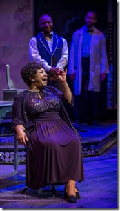 "Shari Anderson stars as Aretha Franklin in Black Ensemble Theater's ""Dynamite Divas"" by Jackie Taylor, directed by Rueben D. Echoles. (photo credit: MIchael Brosilow)"