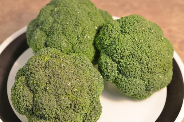 Image result for images related to broccoli