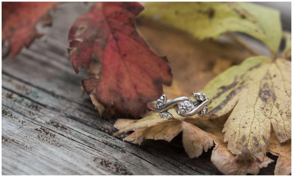 Red Deer Fall River Engagement_0024.jpg
