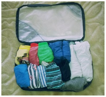 Packing Cubes 4