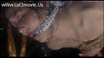 杉本彩とかいう痴女が昔出演したポルノ映画みたいなやつ
