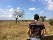 Mikumi Wildlife Lodge Kikoboga