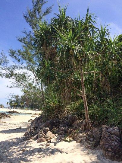 Koh Lipe Sunset Beach - in front of Mountain Resort