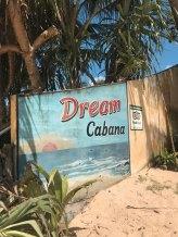 Dalawella Beach Palm Tree Rope Swing