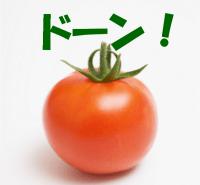 日暮里のトマトに仕入れに行ってきたよ!