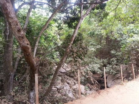 The View from the Bridge, Rock Garden, Morogoro