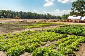Farm Progress