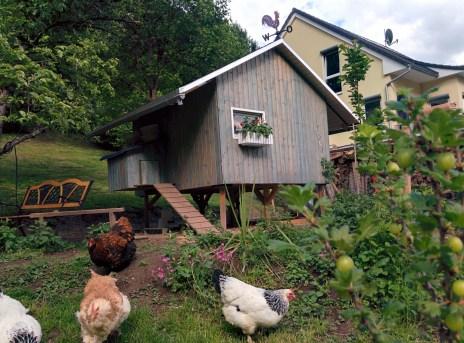 Hühnerhaus in Vorderansicht und Eingangstreppe mit Windfang