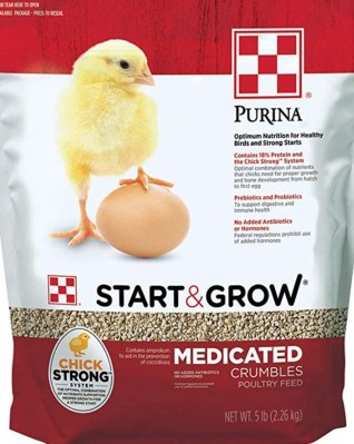 Chick Starter for Dos and Don'ts of feeding Chickens