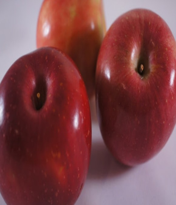 feed your chickens apples in moderation to keep them healthy