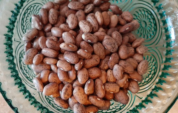 dried beans on dos and don'ts on feed chickens
