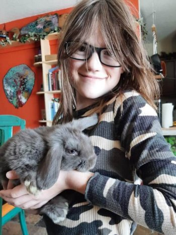 Little girl holding gray dwarf lop eared bunny in a house