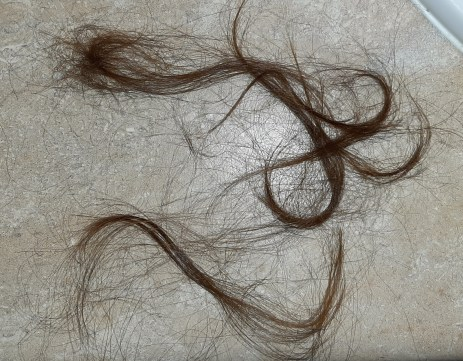 Strands of hair on a counter