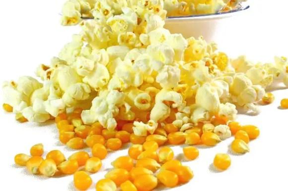 popcorn for chickens