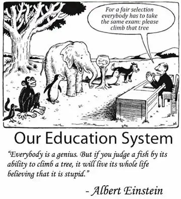 """Everybody is a genius. But if you judge a fish by its ability to climb a tree, it will live its whole life believing that it is stupid."" - Albert Einstein"