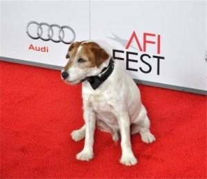 Uggiesm 300x259 - Top Ten Big-Screen Pet Names of 2011