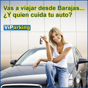 VIPARKING CHIC LICES