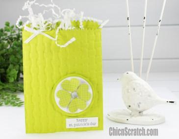 St Patrick's Day Treat Bag
