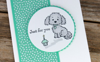Bella and Friends Birthday Card