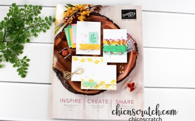 2020 Stampin' Up! Annual Catalog Haul Video