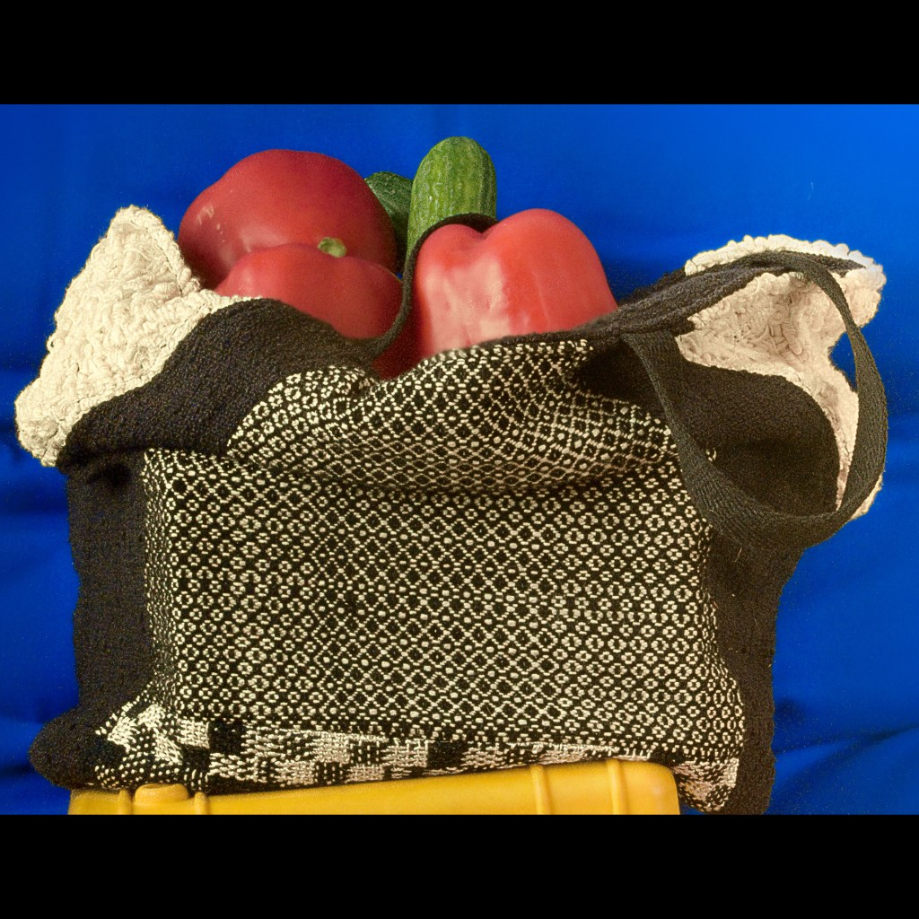 Sandy Fisher, Hand Bag, 2015, 20x13 inches, $175