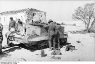 Nordafrika, zerstörter britischer Schützenpanzer